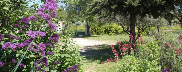 Grand Jardin Villa location saisonniere petite piscine