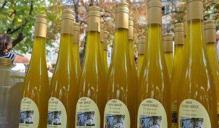 Evenement-Provence-Sault-fête-des-saveurs