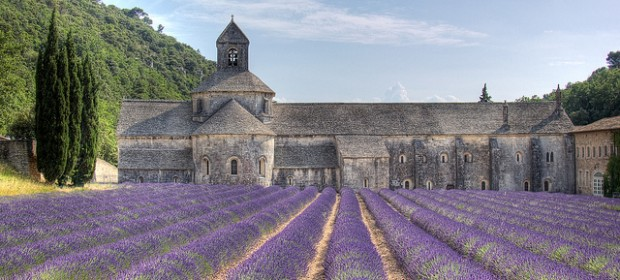 L'Abbaye de Sénanque encerclée de lavande…